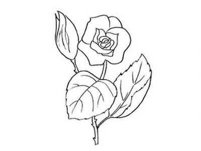 L 39 usignolo disegni fiori da colorare for Fiori facili da disegnare