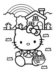 hello kitty3.jpg